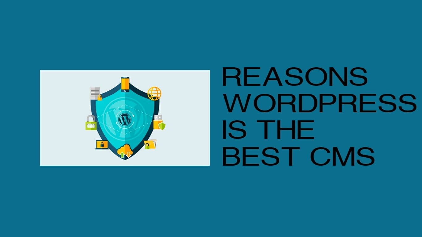 What makes the WordPress as the Best.